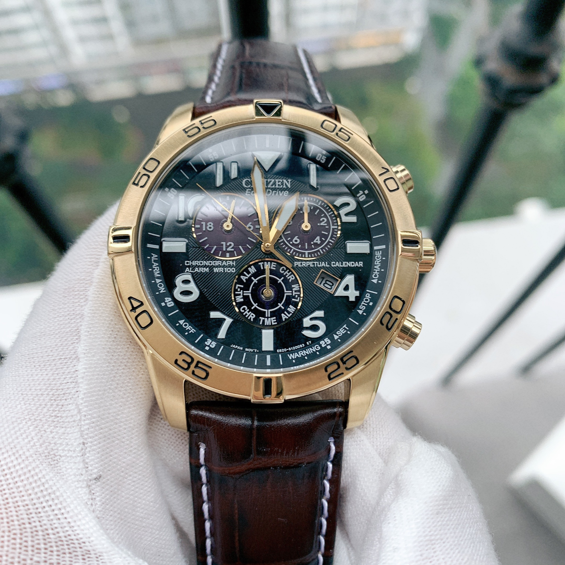 Đồng hồ nữ chính hãng Citizen Eco-Drive Perpetual Calendar Chronograph Alarm